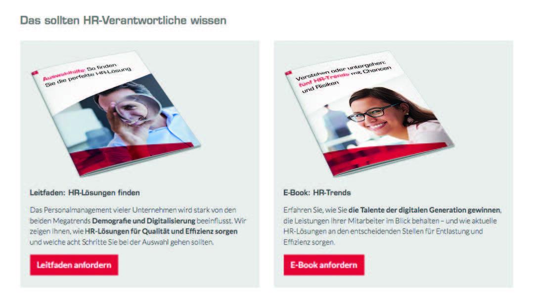 Zwei zum Download angebotene Content-Bausteine.